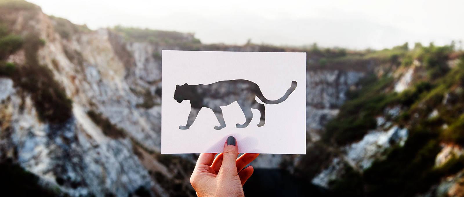 трафарет тигр