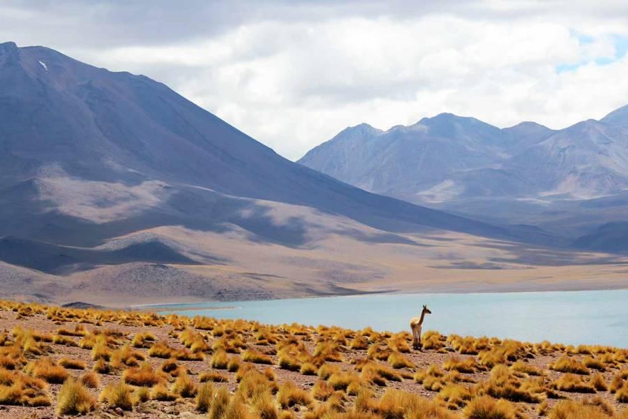 Чили горы